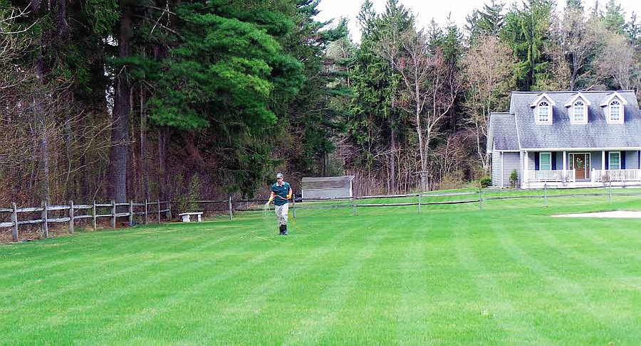 technician spraying large lawn (cropped)
